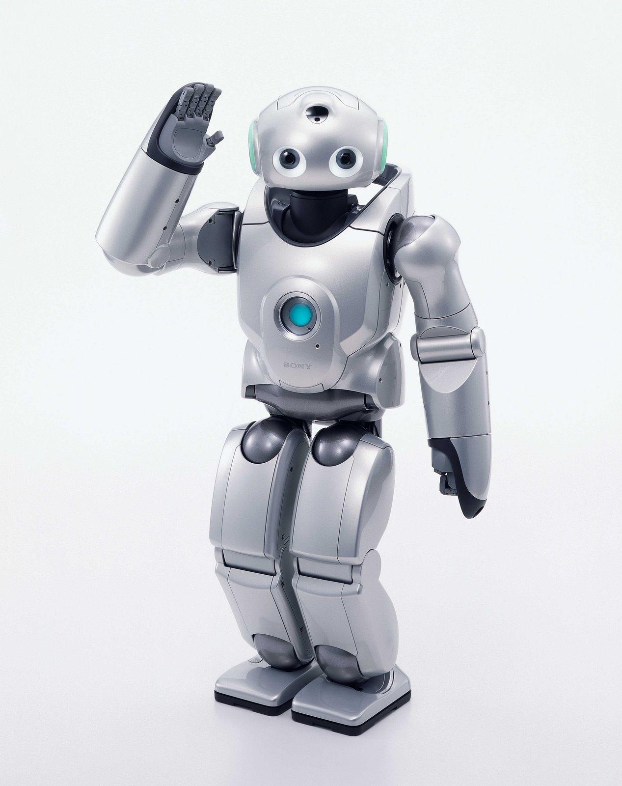saya robot - developed in tokyo essay