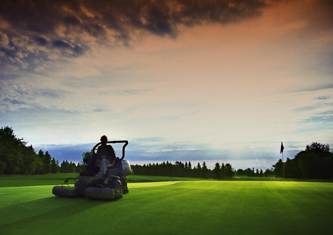 Lawn mow when lawnmowers snowblowers for How often should you mow your lawn