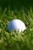 golf ball 66x100 Top 100 Free iPhone 4 Sports Wallpapers 640×960