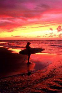 surfer 200x300 surfer