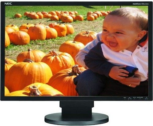 NEC MultiSync EA221WM BK TOP 10 LCD Monitors
