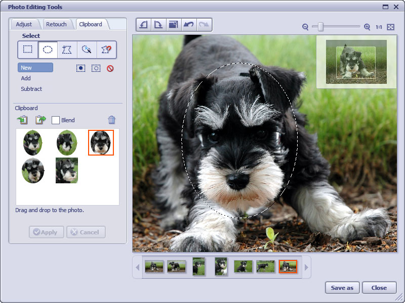 Top 10 Image Editing software