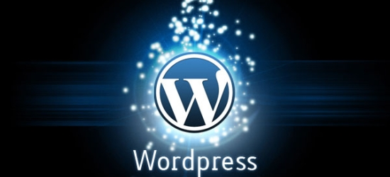 wordpress How to master Wordpress Shortcodes?
