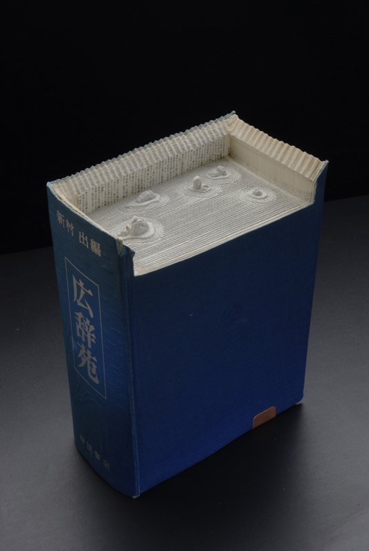 00009837 Fascinating Book Sculptures