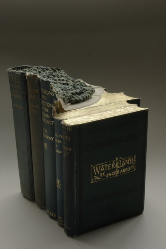 00009846 550x821 Fascinating Book Sculptures