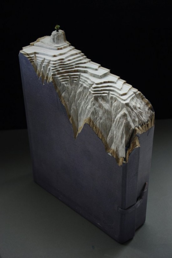 00009847 550x822 Fascinating Book Sculptures