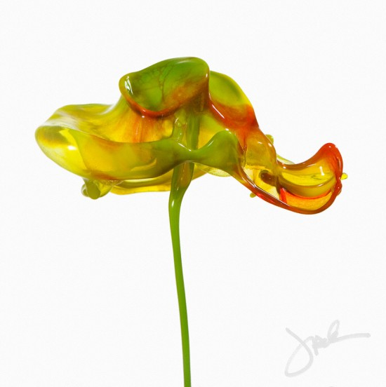 Jack Long splash flowers2 550x552 The Stunning Splash Art!