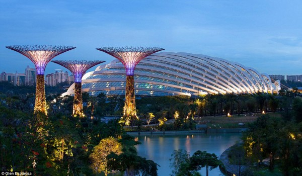 Singapore Gardens by the Bay Supertrees 02 600x350 The Mechanical Forests