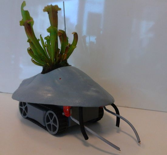 robotplantmover1 thumb 550xauto 101125 Robotic Cart Never Let Your House Plants Die!