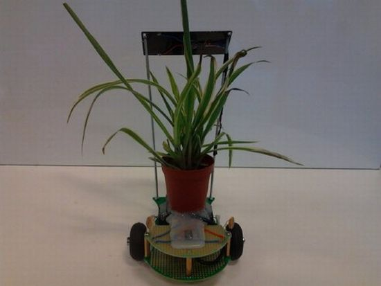 robotplantmover3a Robotic Cart Never Let Your House Plants Die!