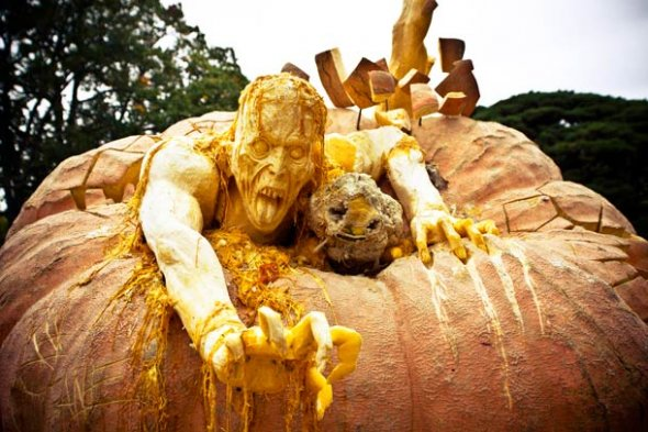 00046040 Amazing Pumpkin Art [Pictures]