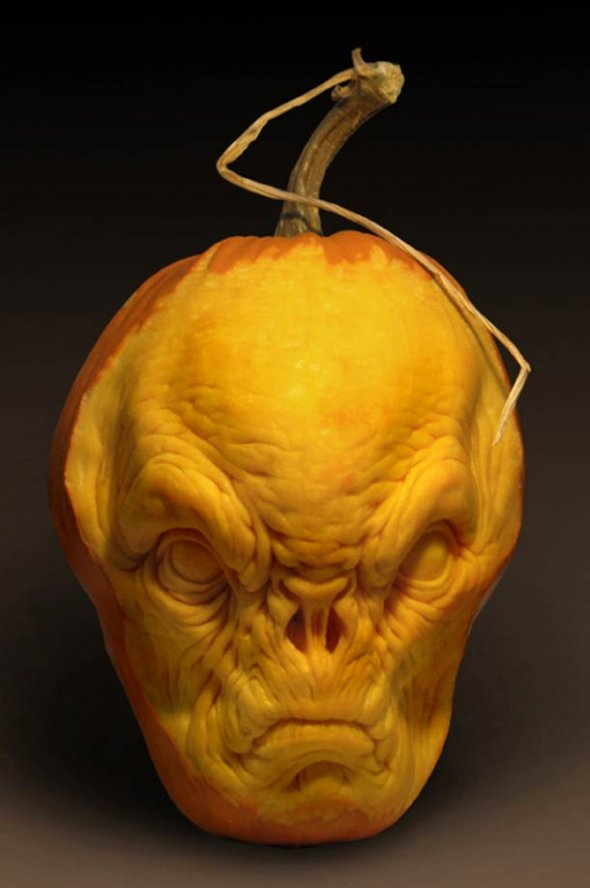 00046046 Amazing Pumpkin Art [Pictures]