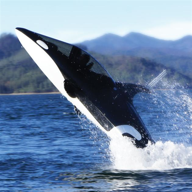 Killer-Whale-Submarine-1