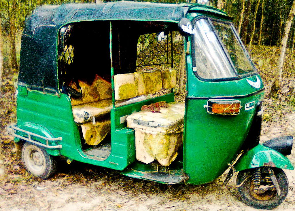 1. Custom Rickshaws (India, Bangladesh)