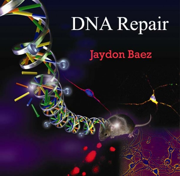 8. DNA Repair 600x587 Top 10 New Medical Technologies That Make You Live Longer