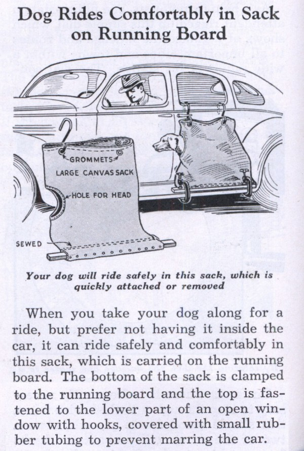 3. Dog Sacks