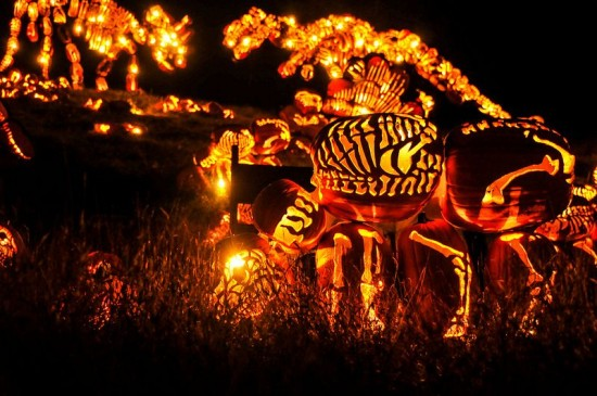 Jack-o-lantern-festival4-550x365