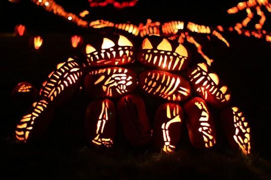 Jack-o-lantern-festival6-550x366