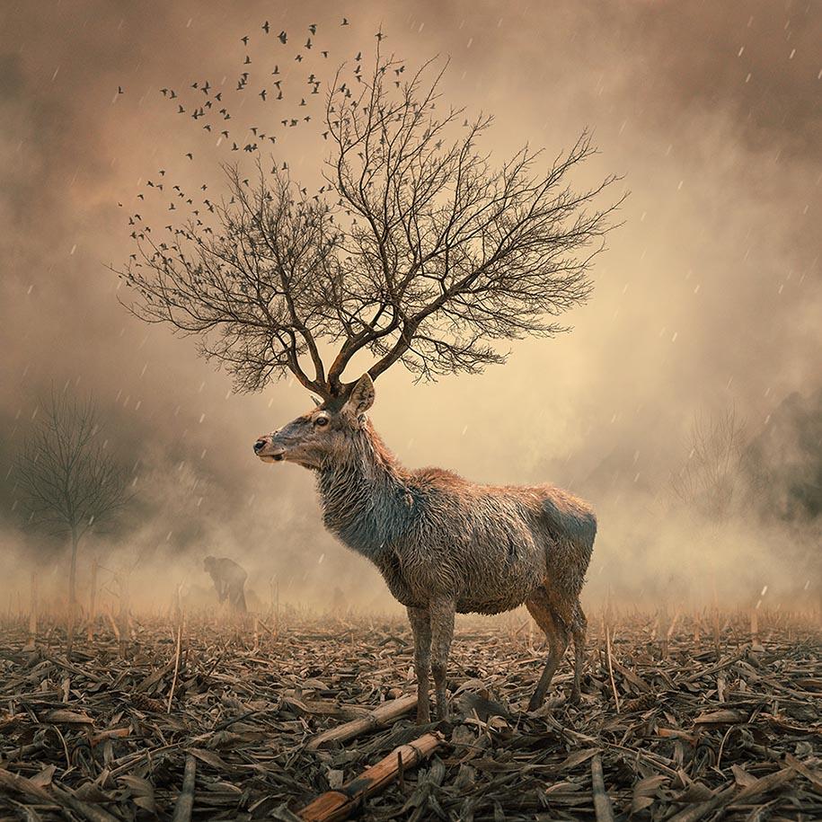 surreal-dream-photos-caras-ionut-7