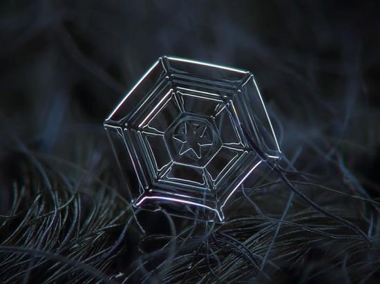 snowflake-closeup4-550x412