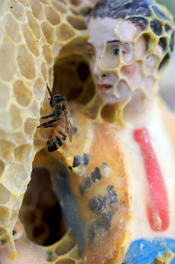 bees-sculpture