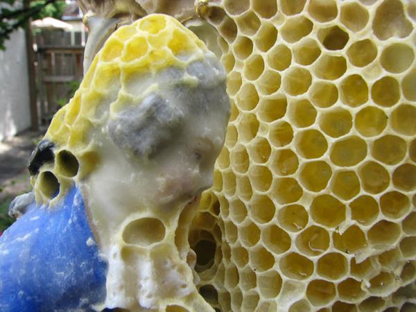 bees-sculpture6