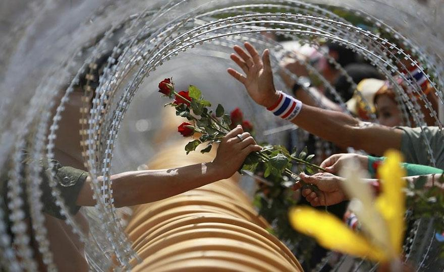 6. A protester extends a rose flower to a law enforcement officer during an anti-government protest in Bangkok.