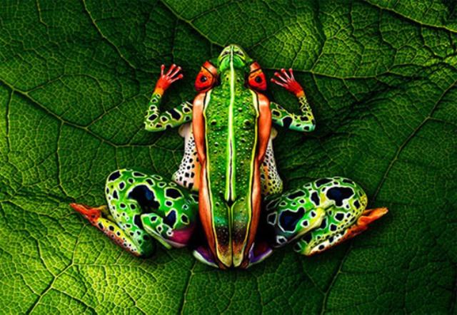 Amazing Camouflage Body Painting 2