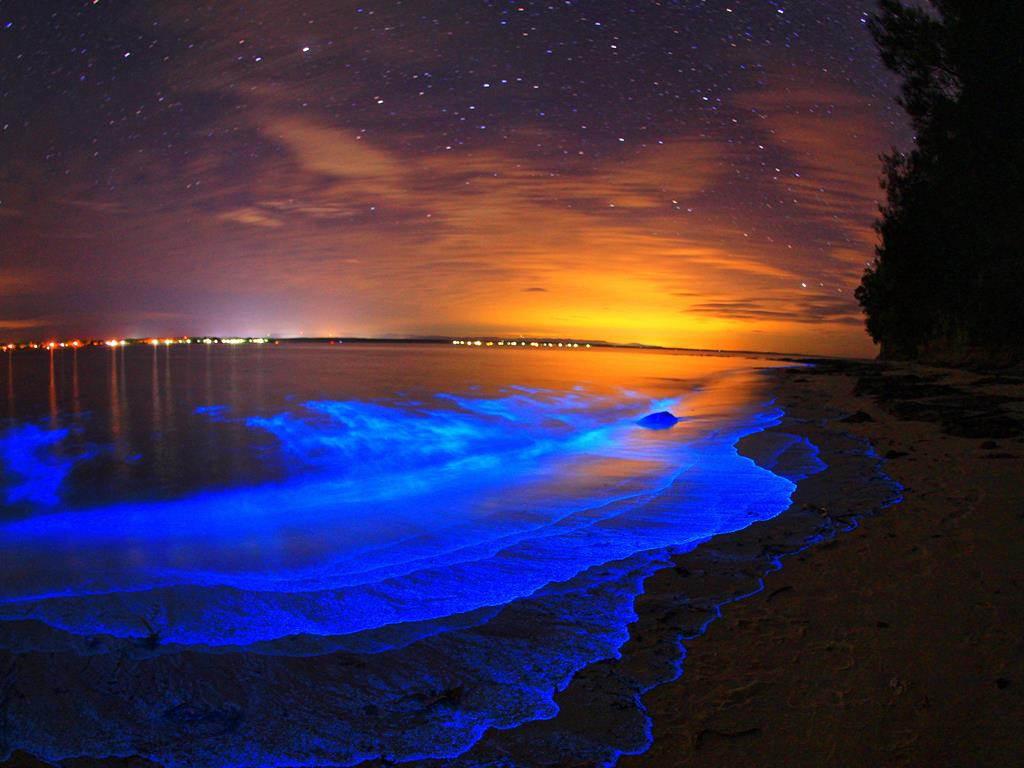 Biolumisence Nature is Incredibly Beautiful; Look at These 20 Mind Blowing Natural Weather Phenomena