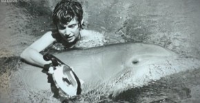 margaret and dolphin 2