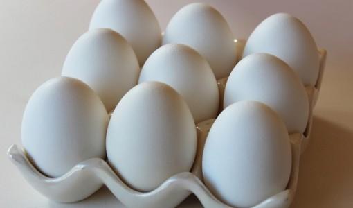 MJS eggs2.jpg
