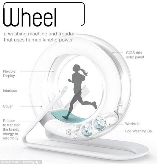 hamster wheel washer