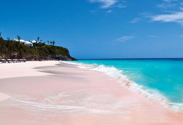 Pink Sand Beach, Bahamas 1