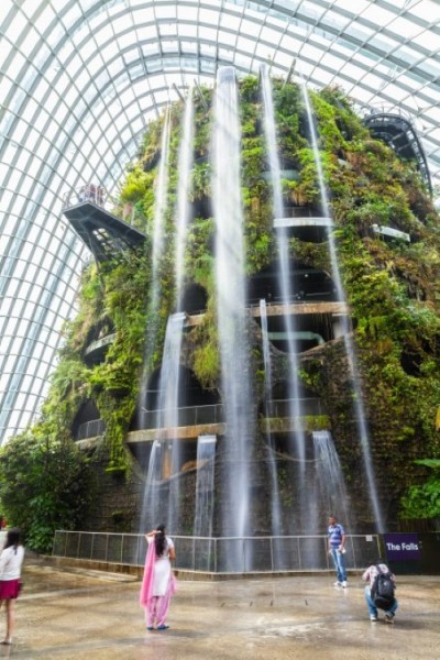 singapore-gardens-by-the-bay-supertree-cloud-forest-9