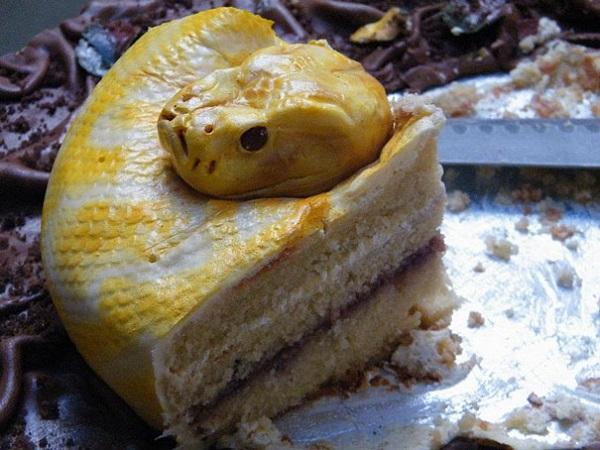 the snake cake 2