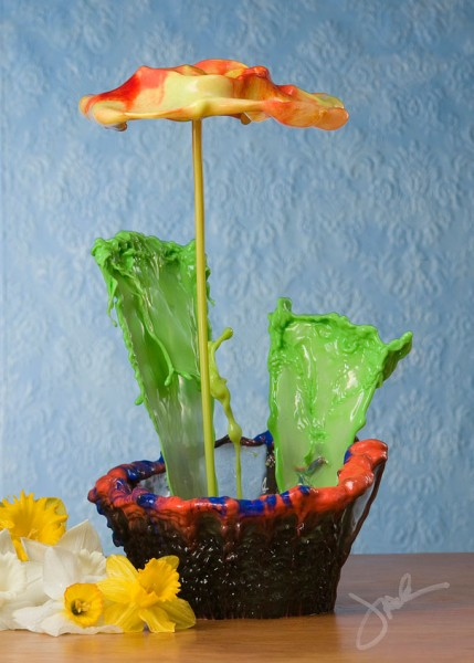 liquid splash flowers 4