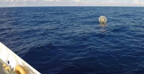 man floating in bubble