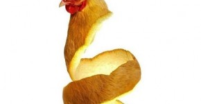 orange chicken preview