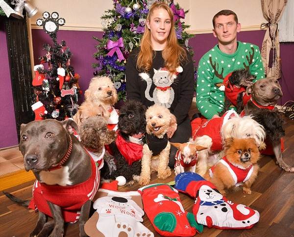 12 dogs of christmas 5