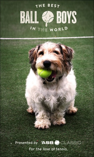 dogs in tennis 4