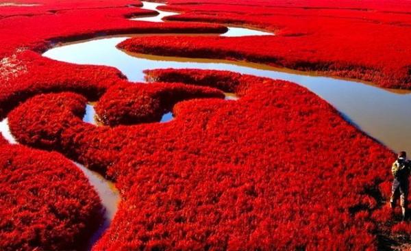 red beach 1