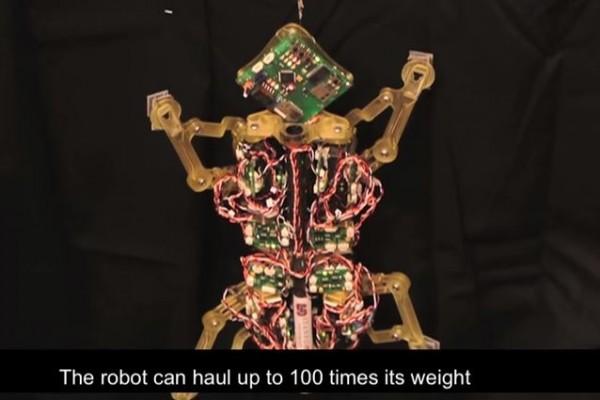 strong robot 2