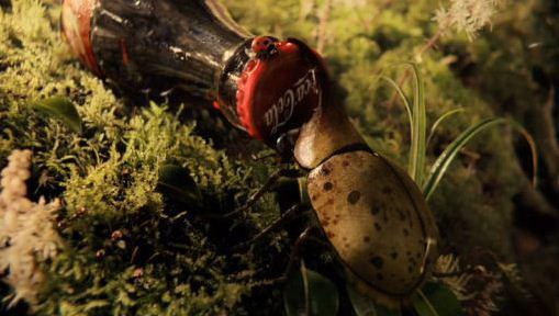killing bugs with coke