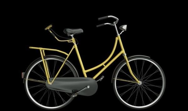 cyclee 3