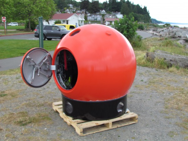 survival capsule 1
