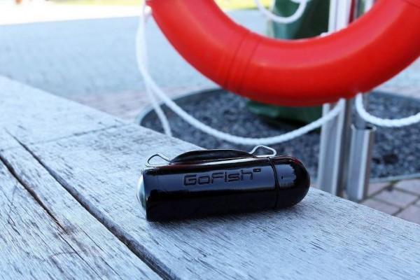 gofish cam 1