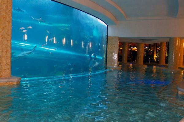 unique swimming pools 10