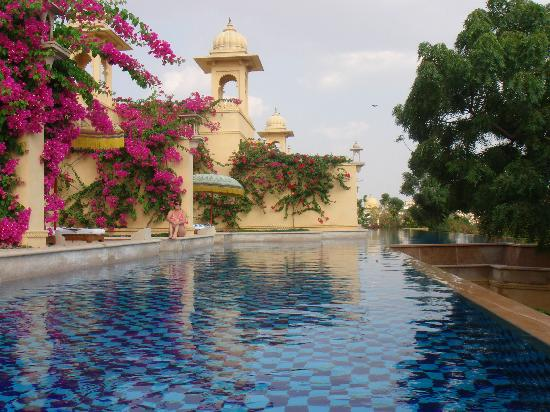 unique swimming pools 8