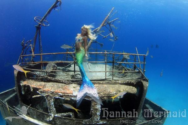 real life mermaid 3