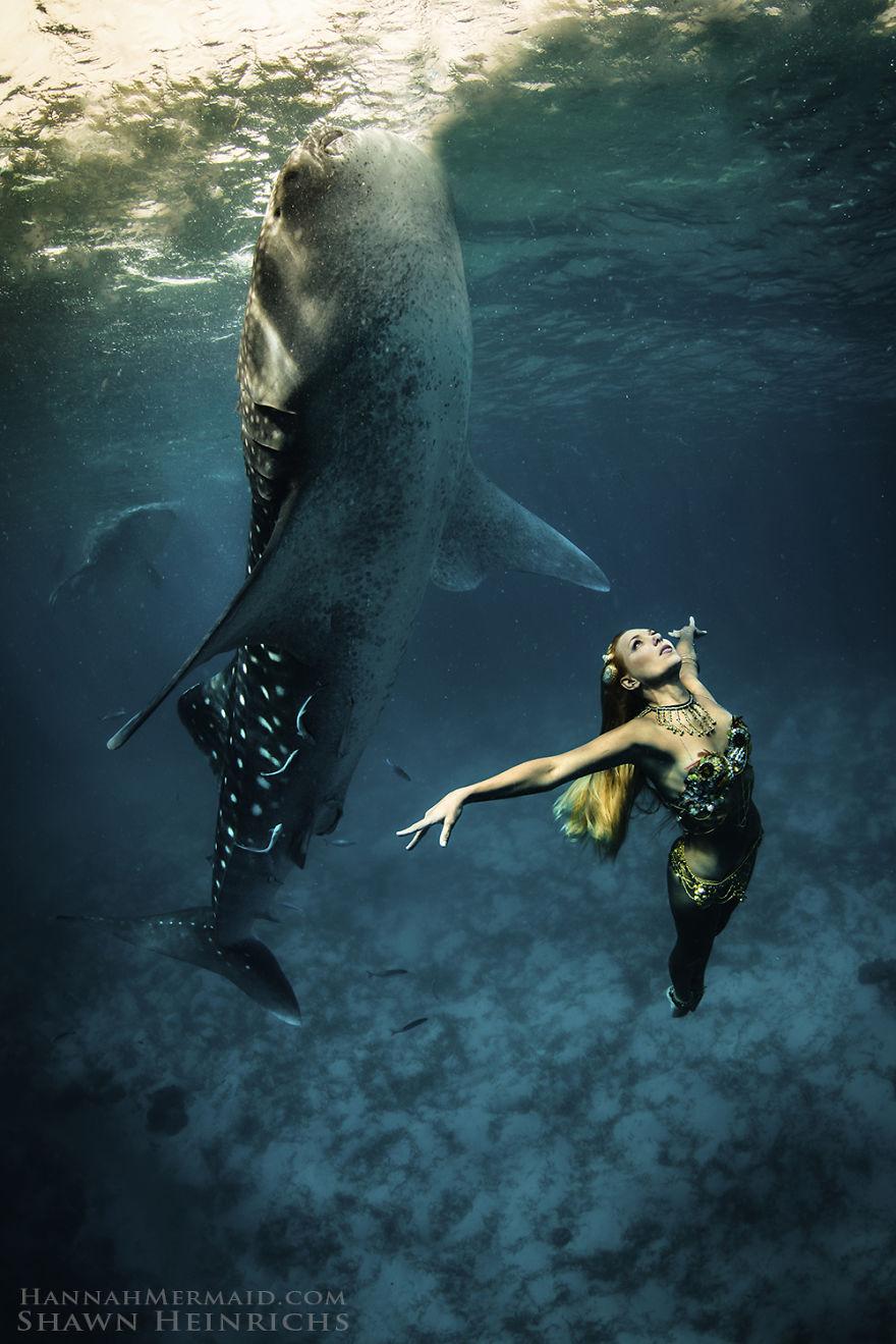 Real-Life Mermaid Raises Awareness For The Ocean's Health ...